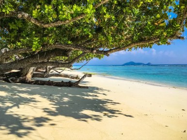 Urlaub Seychellen - Beste Reisezeit Seychellen - Joerg Baldin-1922