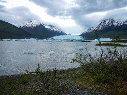 Gletscherwandern in Alaska 2017 - Brigitte Geiselhart-20