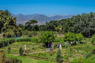 Urlaub in Südafrika - Jutta Lemcke - DSCF4793_korr