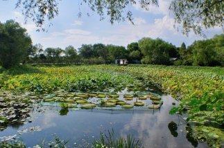 Hangzouh-Wetland-Park-China-Reiseblog-Breitengrad53-Elisabeth-Konstantinidis-SC_0623