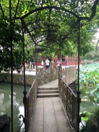 Suzhou-Discoverchina2017-China-Reiseblog-Breitengrad53-Elisabeth-Konstantinidis_MG_2995