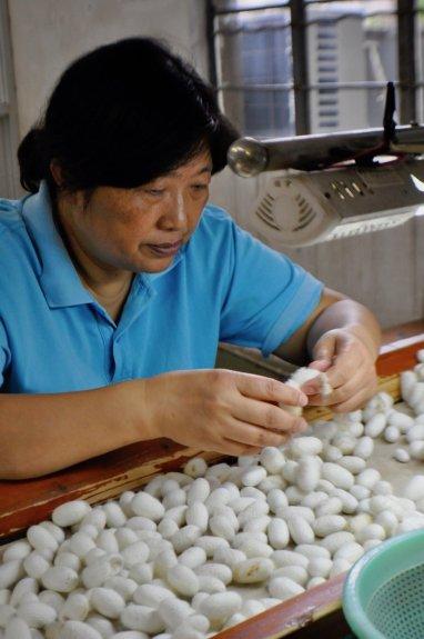 Suzhou-Discoverchina2017-China-Reiseblog-Breitengrad53-Elisabeth-Konstantinidis_SC_0147