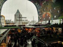 AIDAperla-Metropolen-Rotterdam-5-von-16.jpg
