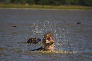 Mosambik-Breitengrad53-Reiseblog-Andrea Tapper-2