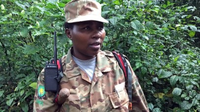 Uganda-Gorillas-Breitengrad53-Reiseblog-Jutta-Lemcke-_2800_korr