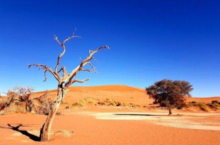 03Liane-Ehlers-Africanexplorer-breitengrad53