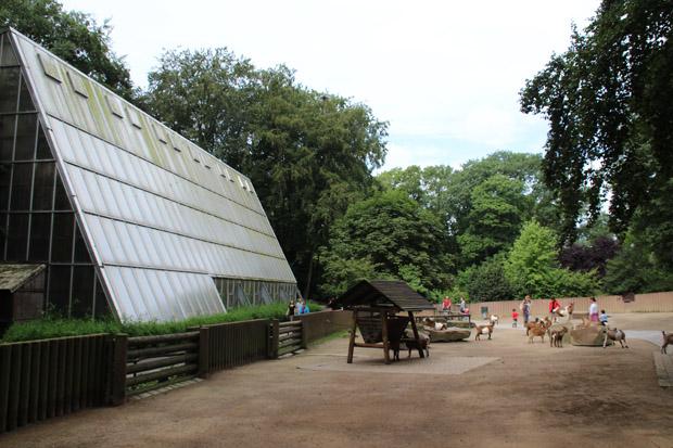 Relativ lieblos wirkt der Streichelzoo vor dem Regenwaldhaus