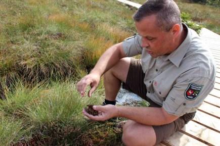Raik Fleckstein ist Ranger im Nationalpark