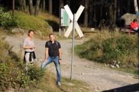 Bahnübergang der Brockenbahn