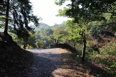Hexenstieg wandern - Der Weg führt durch das Bodetal