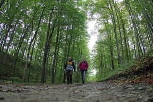 Auf dem Lutherweg wandern macht richtig Spaß