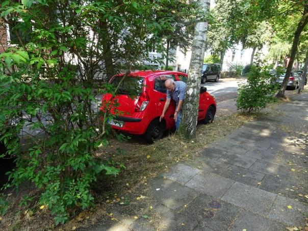 Scharnhorststraße: Parken auf Baumwurzeln