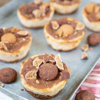 Sinterklaastaartjes -Cheesecake met kruidnoten