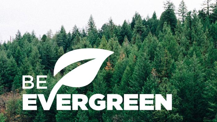 be evergreen image