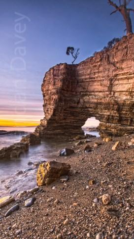 Fossil Cove - Tasmania