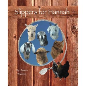Slippers for Hannah 8 x 10 hardcover book