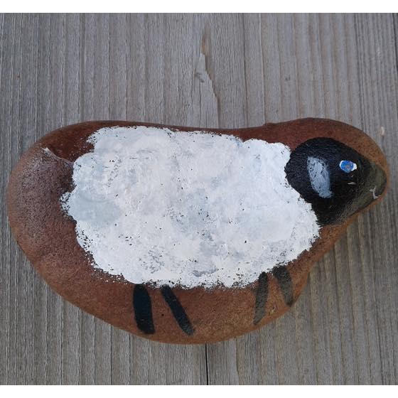Hidden Rocks, Sheep Brendaskidsbooks.com
