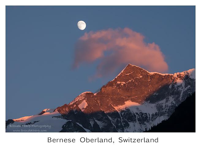 Switzerland Summarized