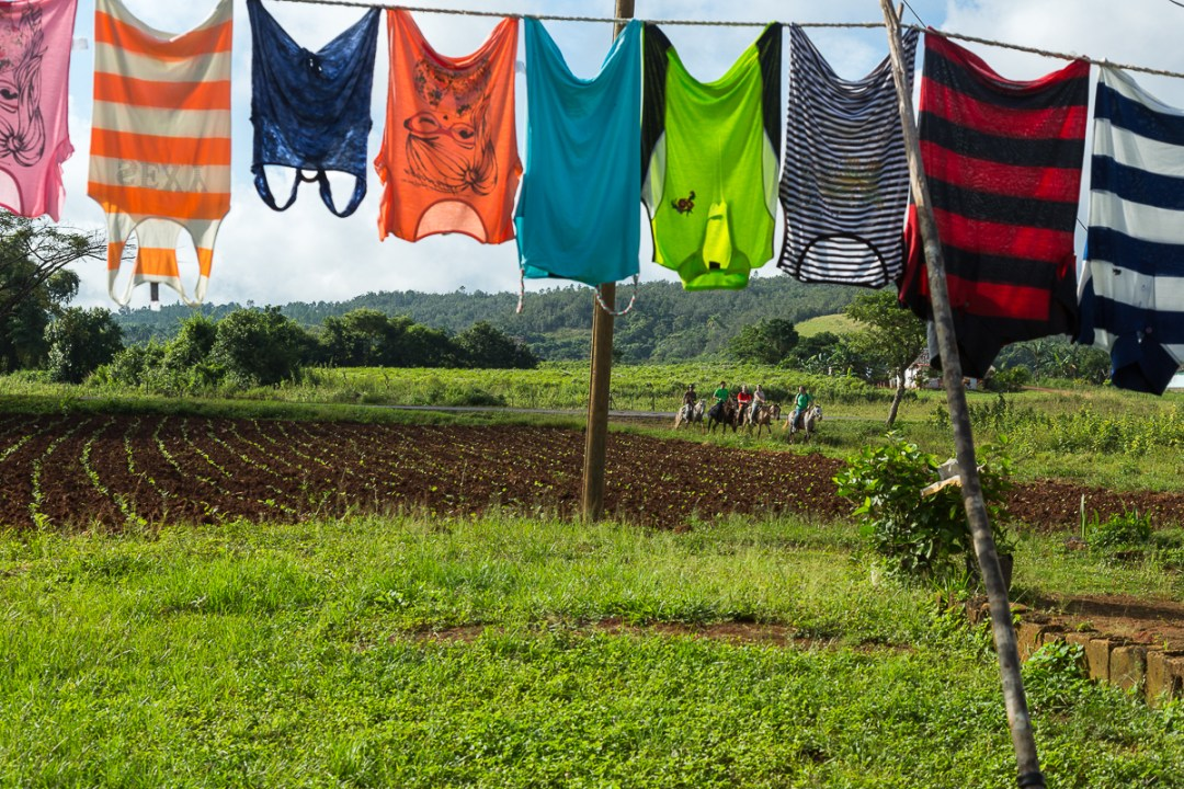 Colorful Laundry on farm, Viñales, Cuba.