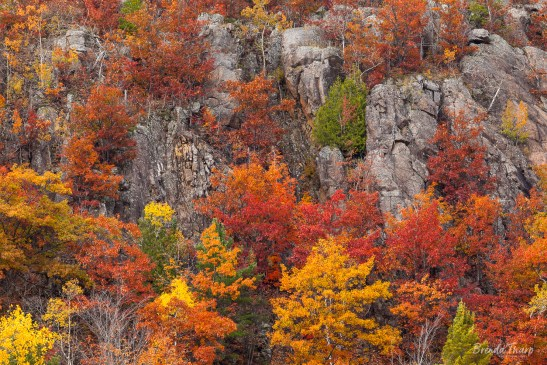 Cliffs and trees in Autumn.