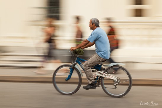 Zooming along on a bicycle.