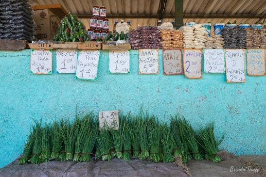 Onions and other Products