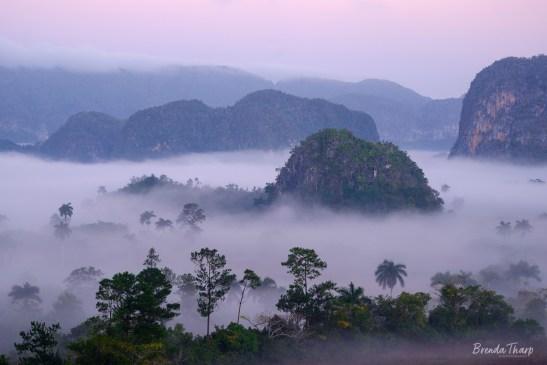 Foggy Dawn over Viñales.