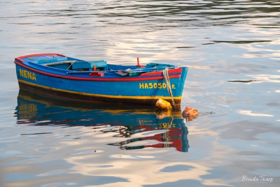 Nena, Havana Harbor.