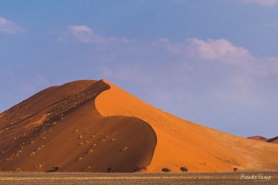 Sand dunes in Sossusvlei.