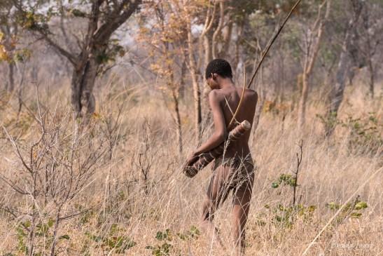 Bushman hunting, Namibia.