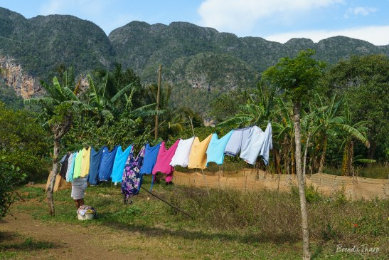 Laundry being hung outside in Viñales, Cuba.