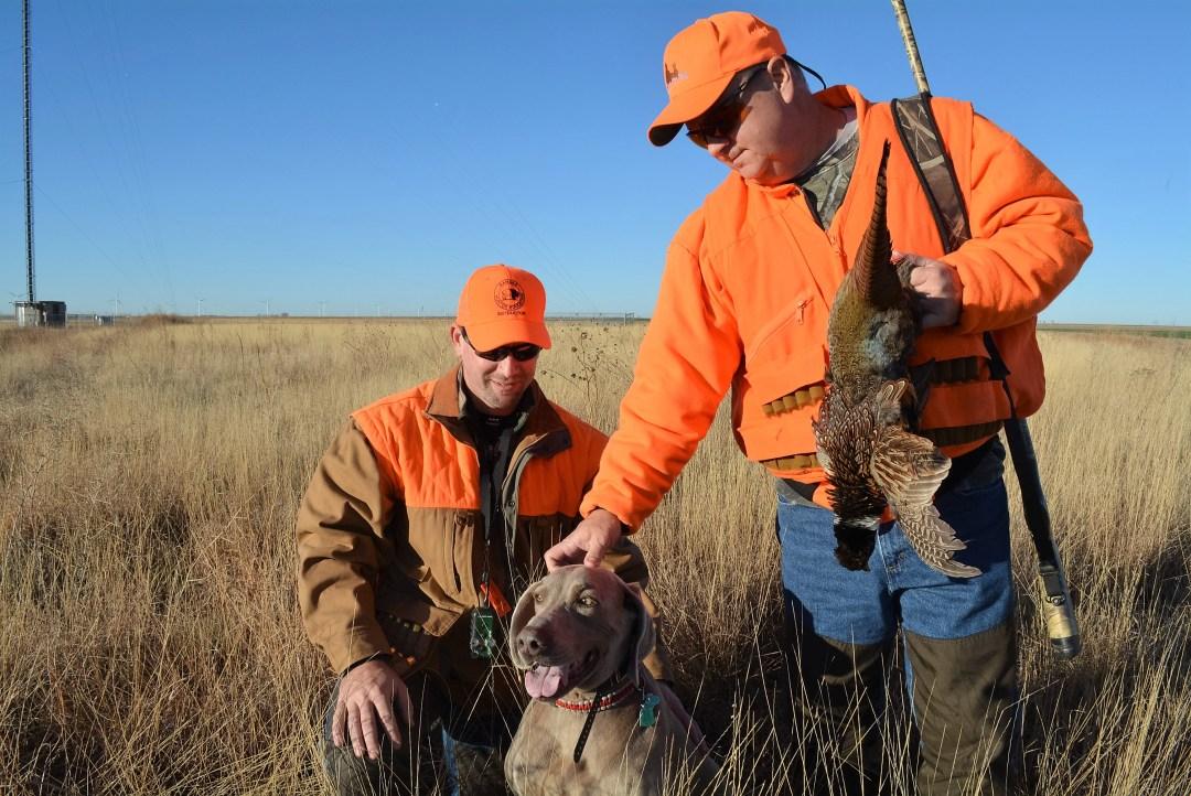 Pheasant Hunting Kansas
