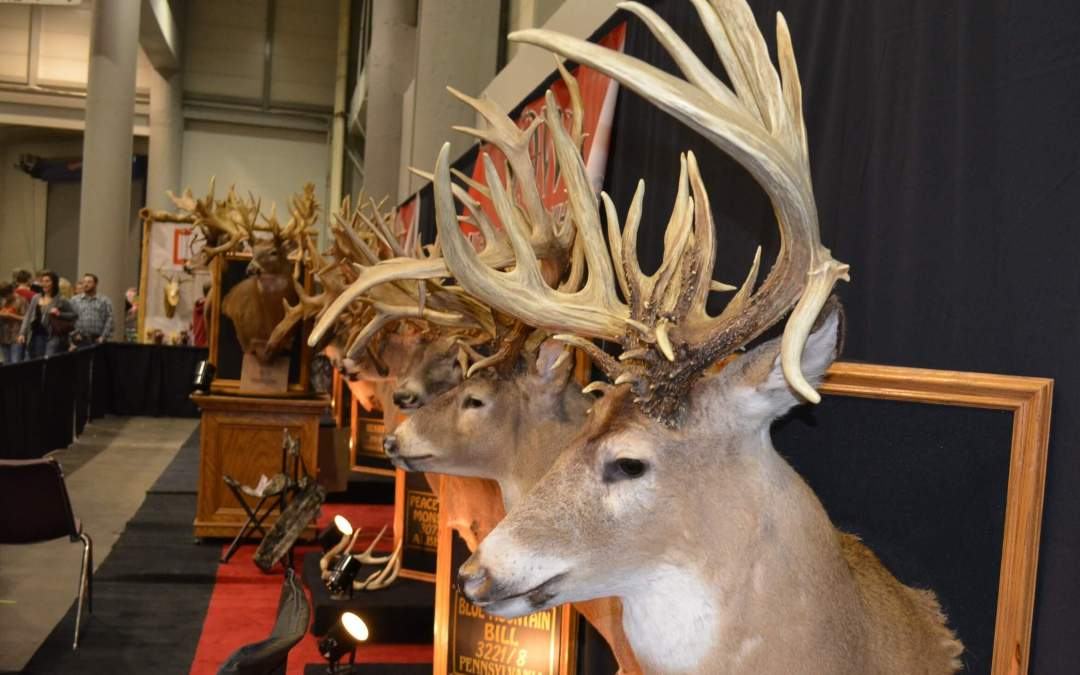 Big bucks will be the big show this weekend in Topeka