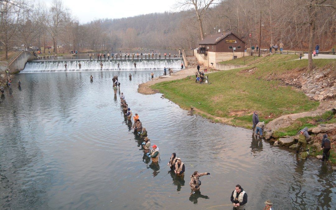 Note to blogger: Sorry if I offend you by thinking the Missouri trout opener is a pretty cool event