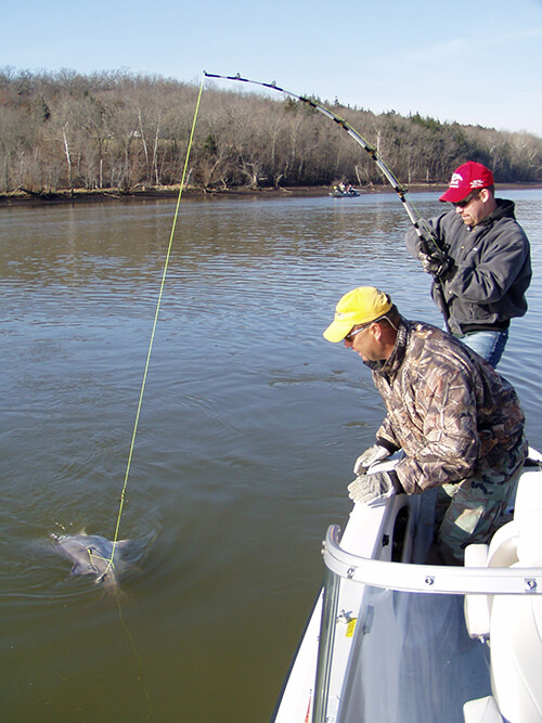 Missouri fishermen have a common goal – to snag a 100-pound (or bigger) fish