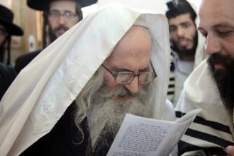הרב שמעון שפירא