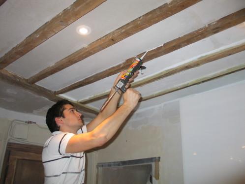 Isolation Phonique Dun Plafond Avec Poutres Apparentes