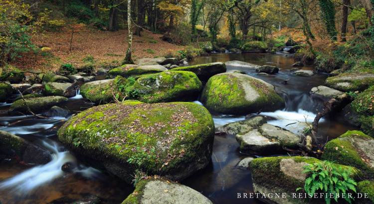Natur Bretagne Schutzgebiete