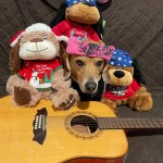 Rock Your Pet Like Bret Contest - Ricky