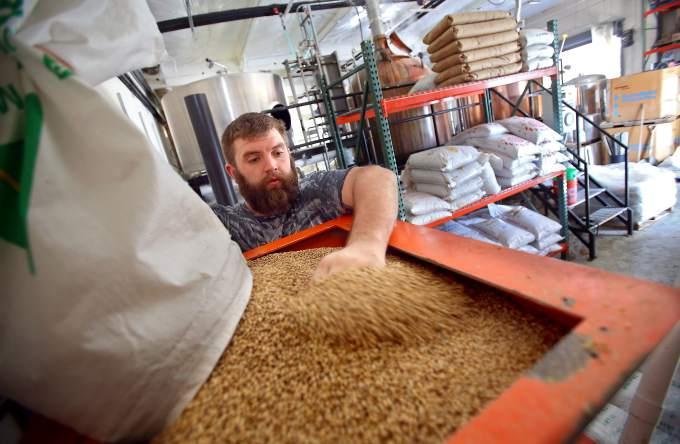 Beer Making Magic at 101 Brewery