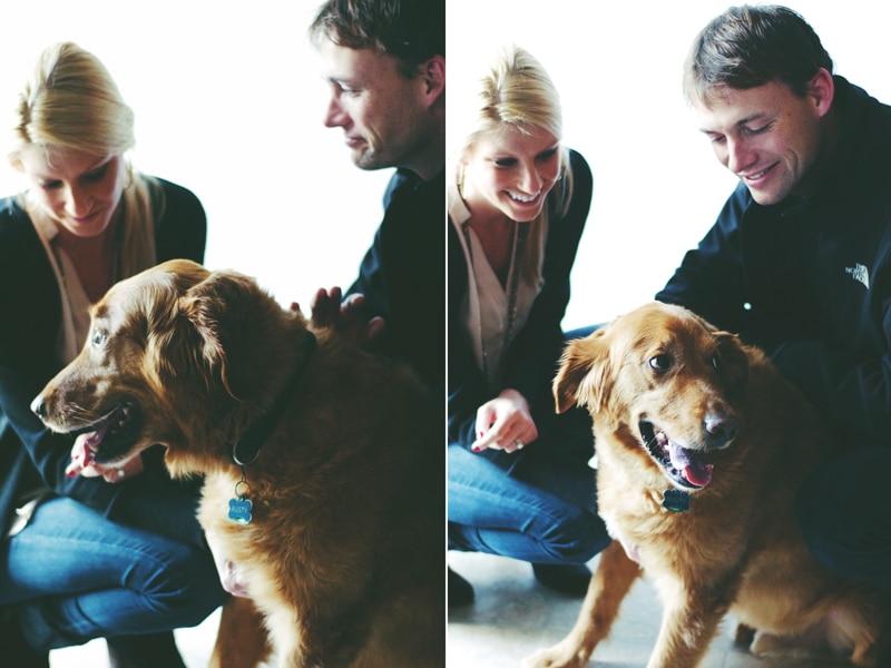 (Peanut-Free) Vegan Dog Treats ||| Brewing Happiness