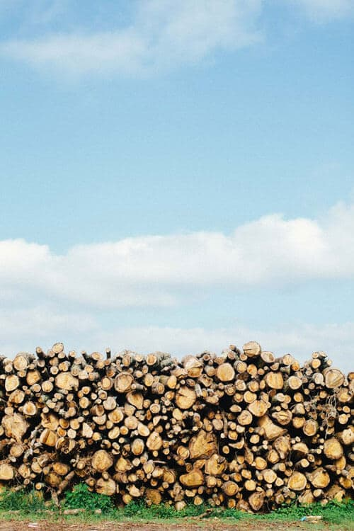 A pile of wooden logs stacked parallel to the blue sky.
