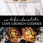 A date-sweetened oat and cereal based chocolate cookie made with Nature's Path Love Crunch Cereal. With ingredients like pepitas, cashew butter, oats, and cacao powder they're practically a granola bar! #healthy #nobakecookies #cookies #brewinghappiness