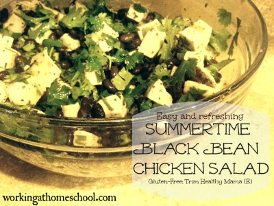 Summertime Black Bean Chicken Salad (E)