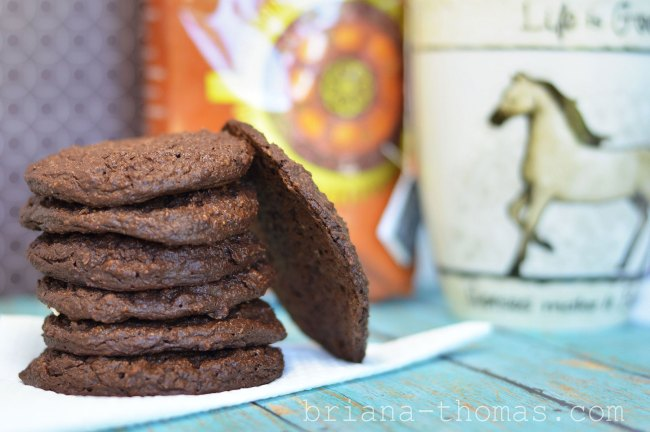 Chocolate Breakfast Cookies