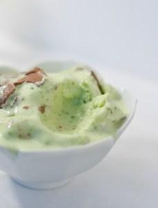 Fudge Swirled Mint Ice Cream