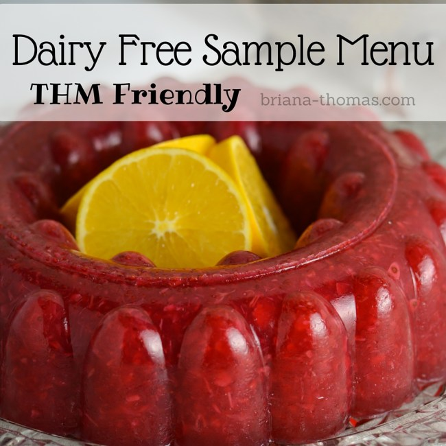 Dairy Free THM Sample Menu