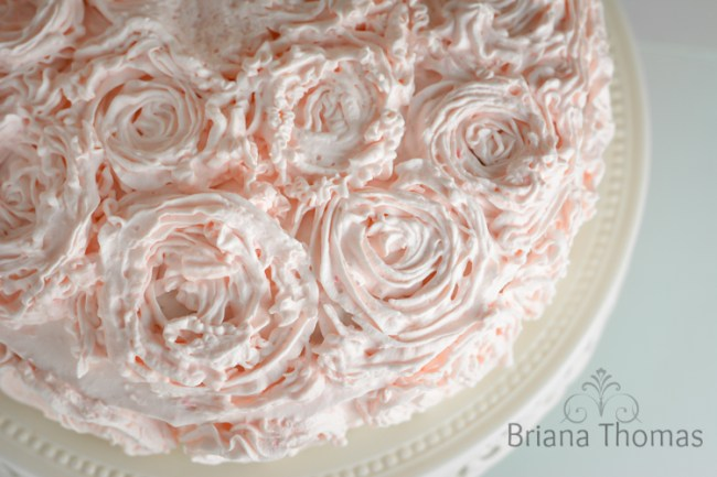 Pipable Whipped Cream Frosting