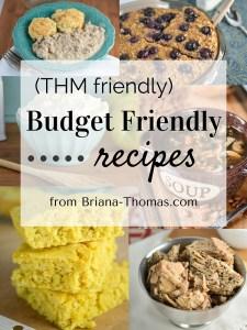 Briana's Budget Friendly Recipe Roundup