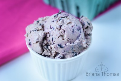 Blueberry Frozen Yogurt